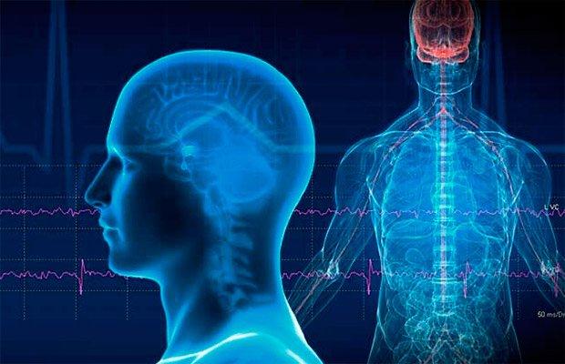 нейрофизиологическая блокада